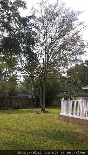 2012-11-22 10.13.55.jpg