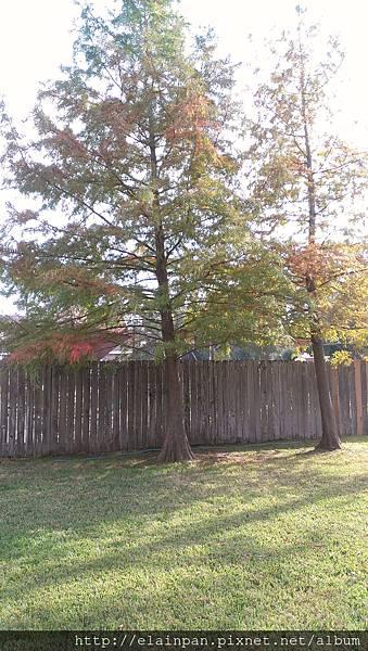 2012-11-22 10.14.49.jpg