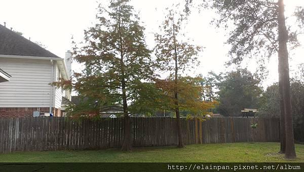 2012-11-23 08.39.26.jpg