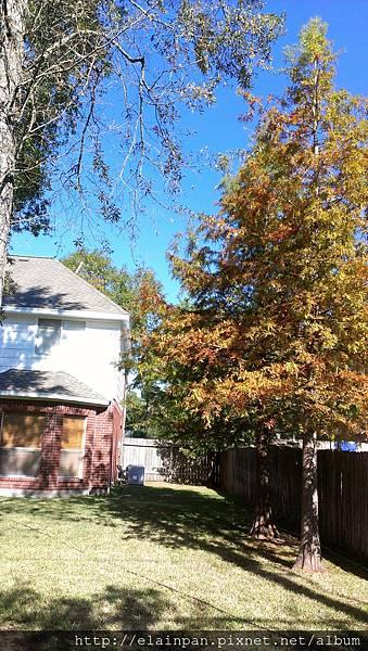 2012-11-25 10.42.56.jpg