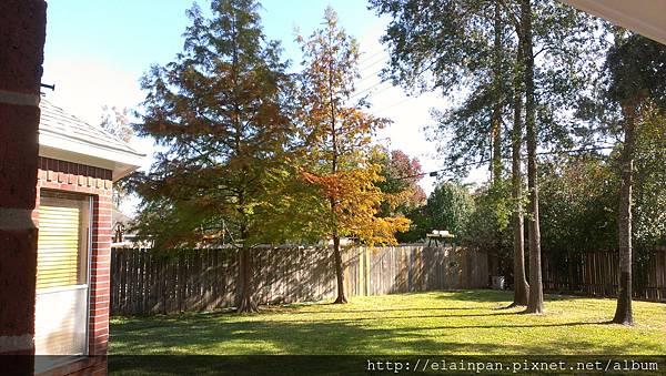 2012-11-25 13.00.43.jpg