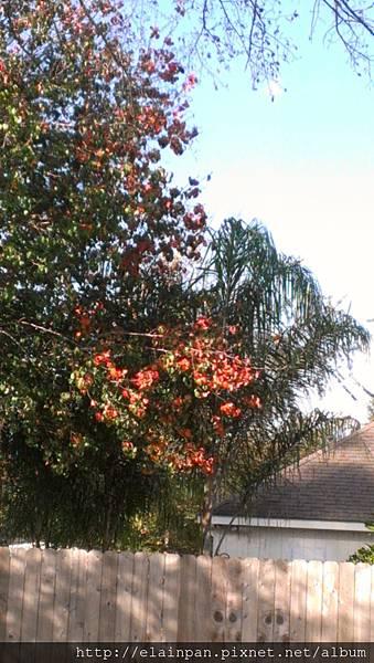 2012-12-01 08.59.24.jpg