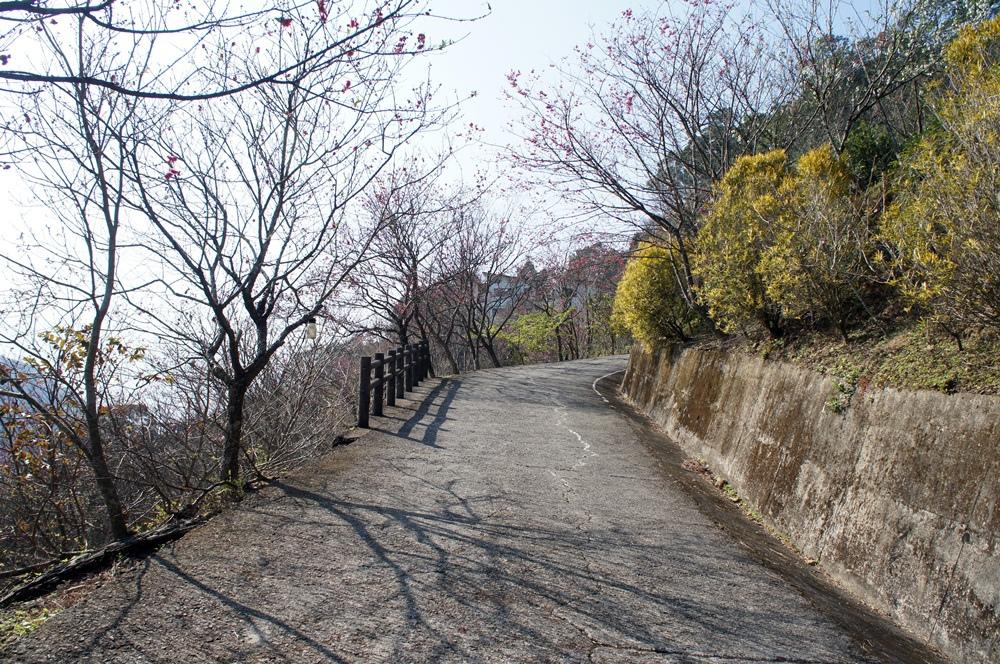洗水山-6.JPG