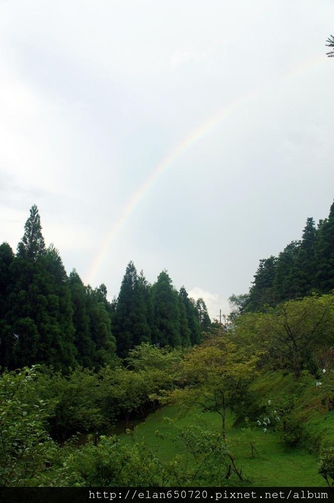 仙園2-34.JPG