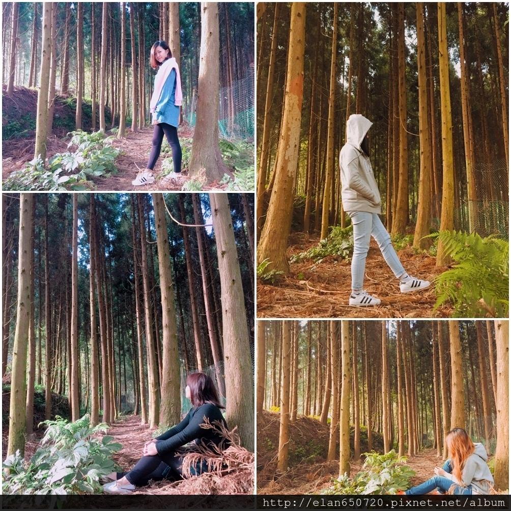仙園3-6.jpg