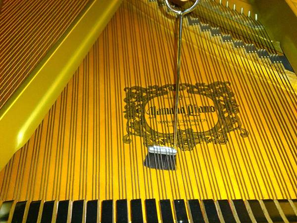 平台琴的響板清理 (7)