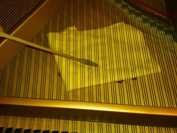 平台琴的響板清理 (6)
