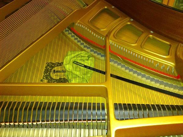 平台琴的響板清理 (4)