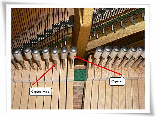 鋼琴用久了沒彈性-hammer跳動