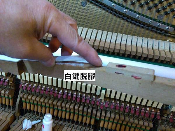 6多重障礙的鋼琴