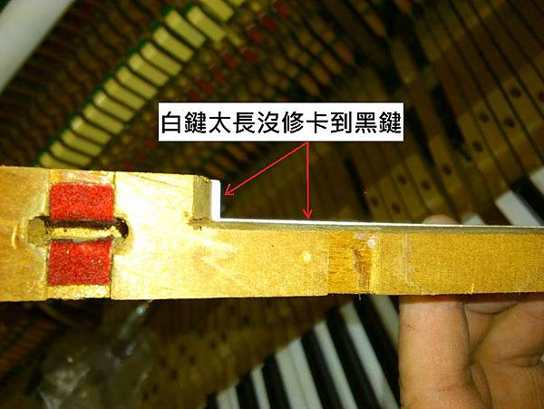 7多重障礙的鋼琴