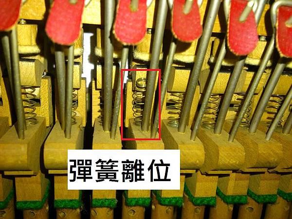 8多重障礙的鋼琴