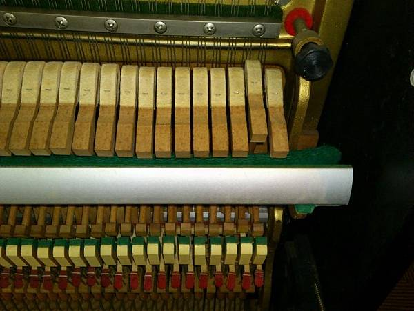 10多重障礙的鋼琴