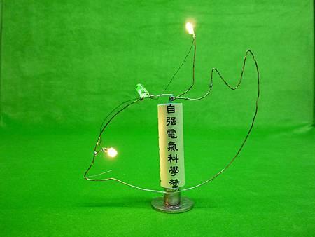 4自強三燈魚.JPG