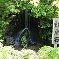 5/31 金閣寺 鯉魚石