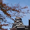 day4 熊本-湯布院- 09 再近一點.JPG