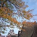 day4 熊本-湯布院- 08 接近熊本城中 by W.JPG
