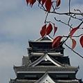 day4 熊本-湯布院- 11 一葉知秋 by W.JPG