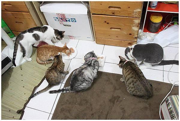2012.01.01跨年聚餐!