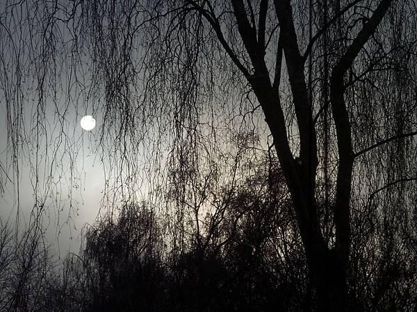 母親像月亮