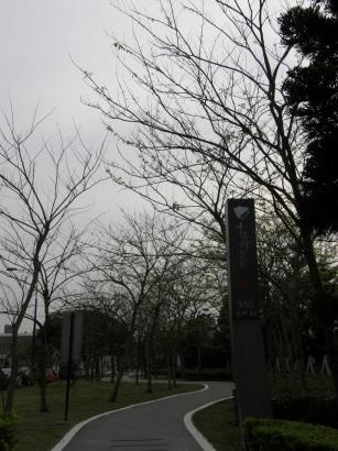 P4033118.jpg