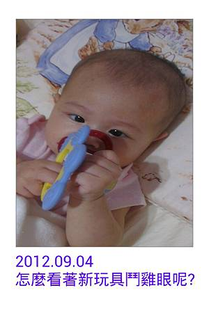 IMG_20120908_095608