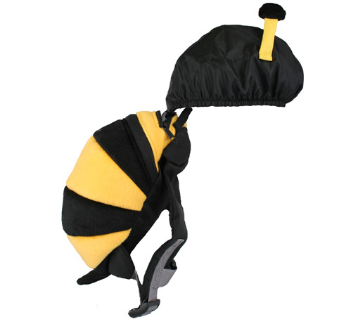 animal-bee-hood-LARGE