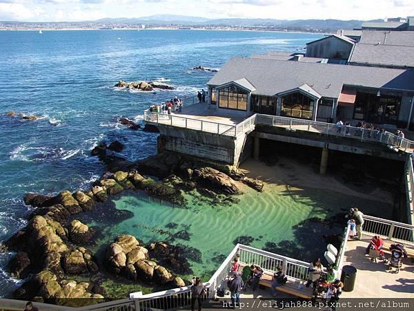 Monterey-Bay-Aquarium.jpg