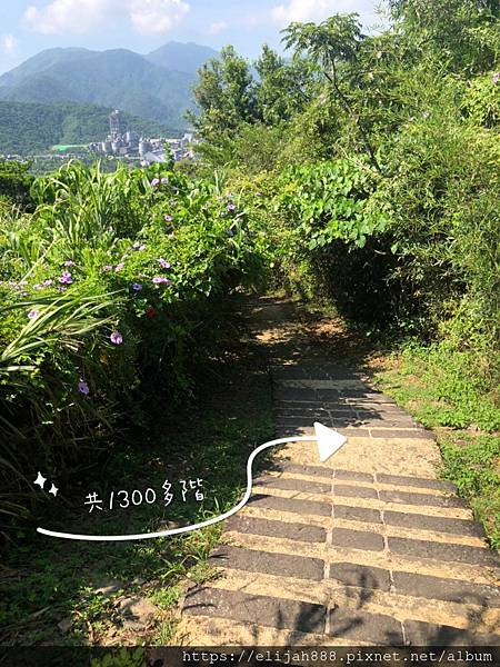 S__73220116.jpg