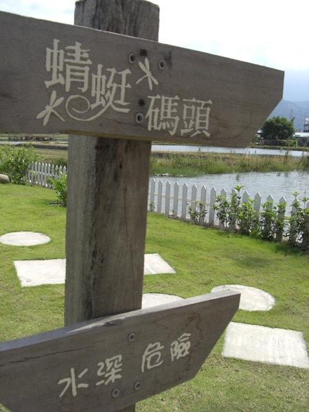 水蜻蜓_068.JPG