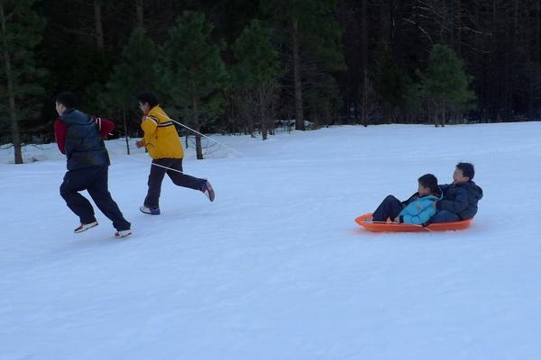 雪橇-07.jpg