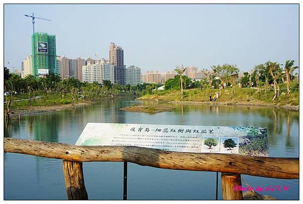 1001113-中都濕地公園-19.jpg