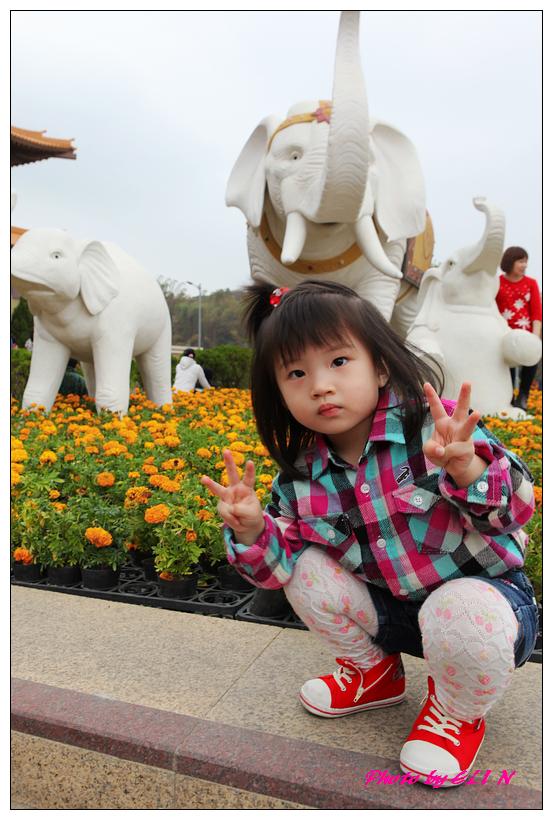 1010226-佛光山之佛陀紀念館-6