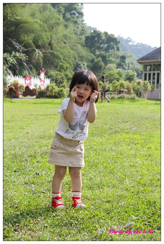 1010523.24-安妮公主花園-29