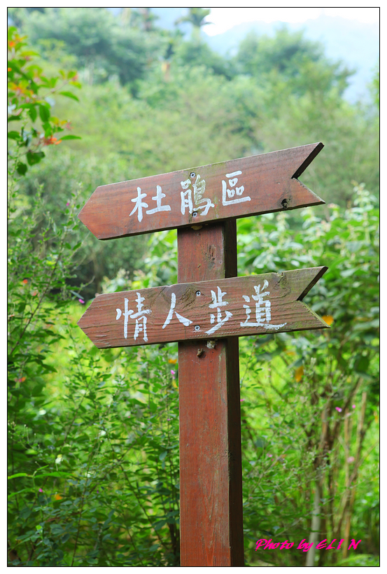 1010523.24-桃李河畔-27