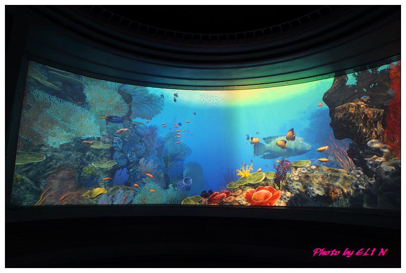 1010921-國立海洋生物博物館+潮州牛肉福-15