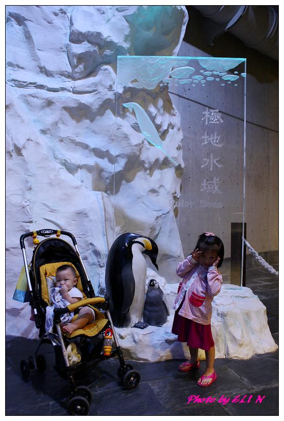 1010921-國立海洋生物博物館+潮州牛肉福-18