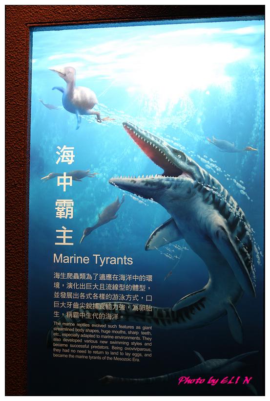 1010921-國立海洋生物博物館+潮州牛肉福-27