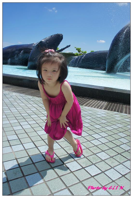 1010921-國立海洋生物博物館+潮州牛肉福-49