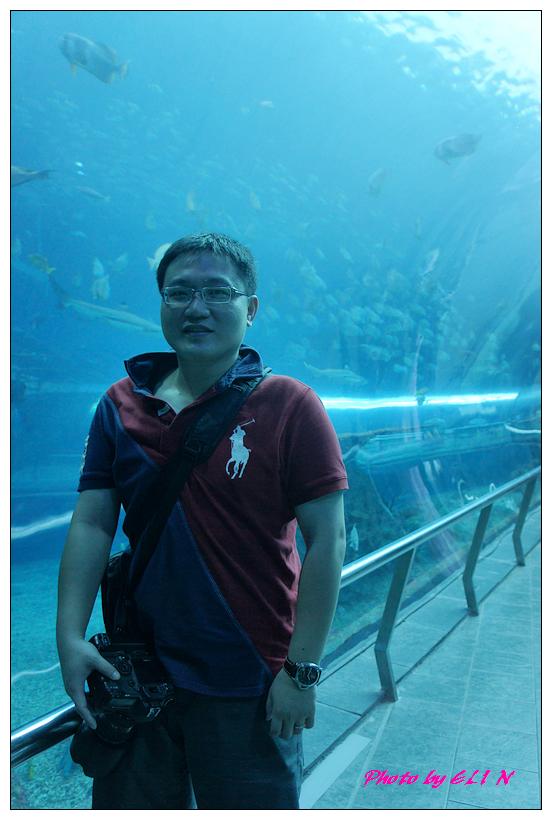 1010921-國立海洋生物博物館+潮州牛肉福-60