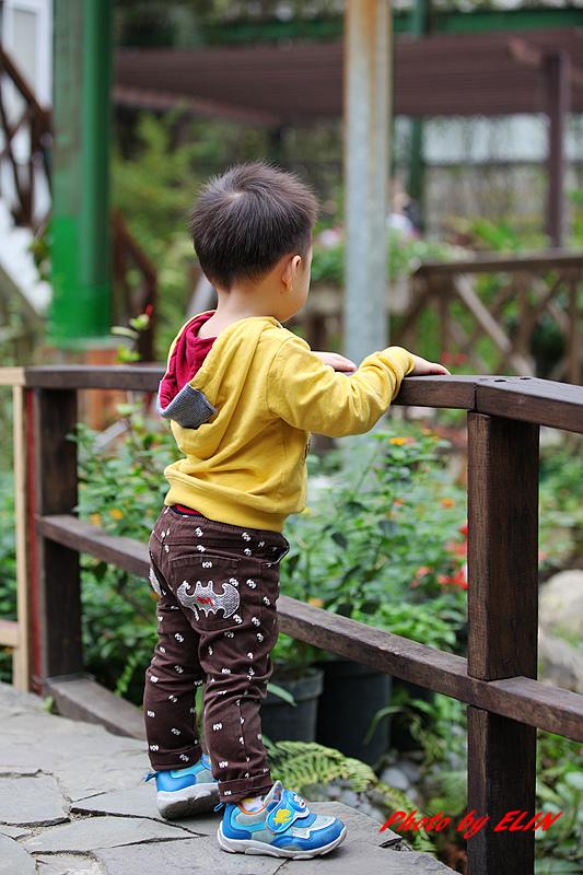 1030308-金獅湖蝴蝶園&屏東來一連莊休閒景觀餐廳-11.jpg