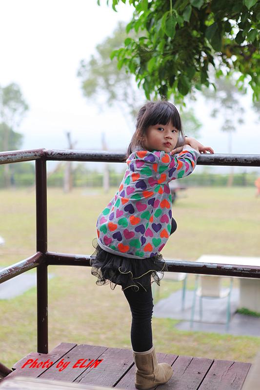 1030308-金獅湖蝴蝶園&屏東來一連莊休閒景觀餐廳-36.jpg