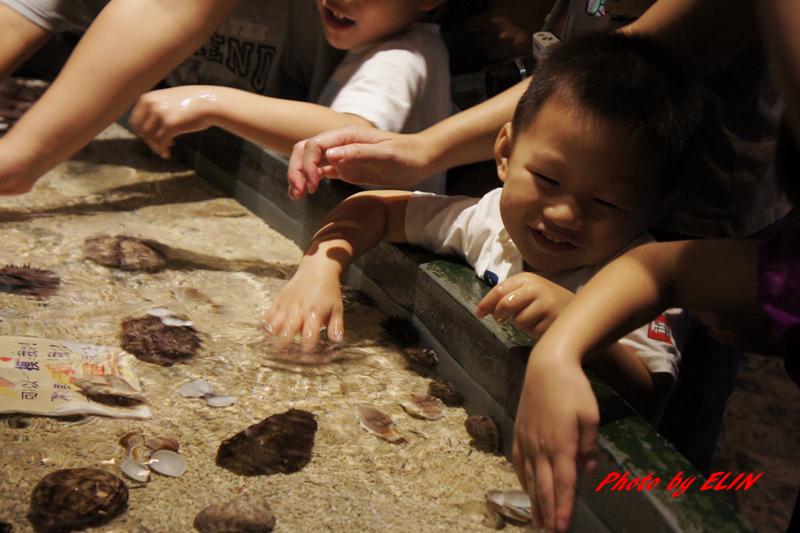 1030822-屏東海洋生物博物館+聚北海道昆布鍋(夢時代店)-18.jpg