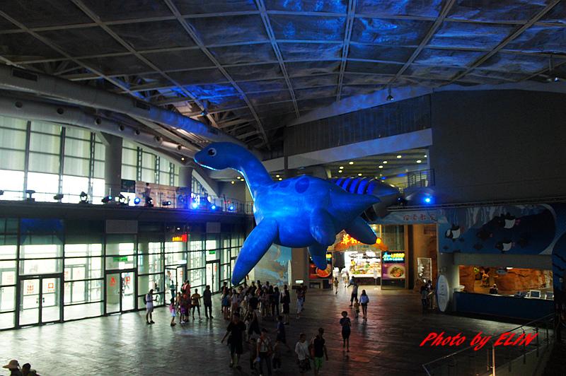 1030822-屏東海洋生物博物館+聚北海道昆布鍋(夢時代店)-26.jpg