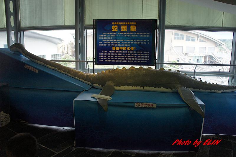 1030822-屏東海洋生物博物館+聚北海道昆布鍋(夢時代店)-32.jpg