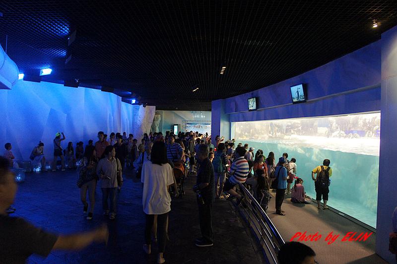 1030822-屏東海洋生物博物館+聚北海道昆布鍋(夢時代店)-35.jpg