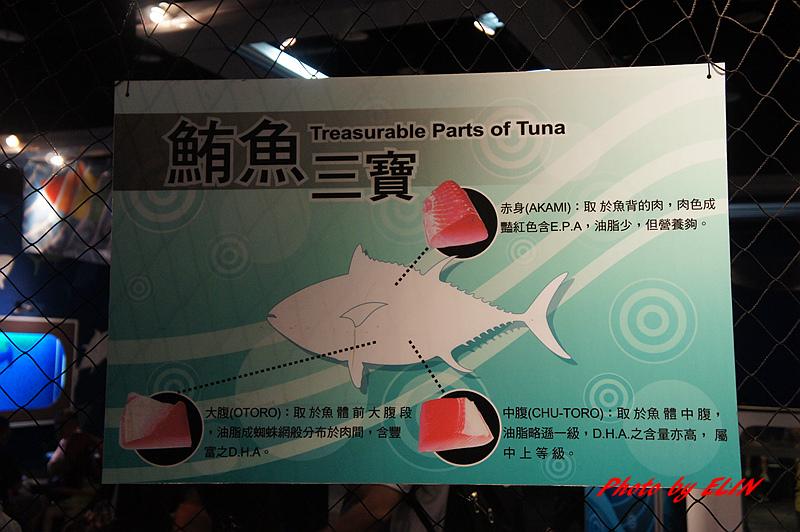 1030822-屏東海洋生物博物館+聚北海道昆布鍋(夢時代店)-36.jpg