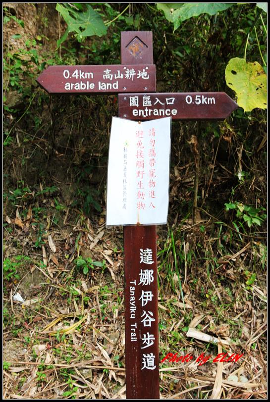 1040110.11-達娜伊谷自然生態公園&日月潭雲品酒店&車程車站-40.jpg