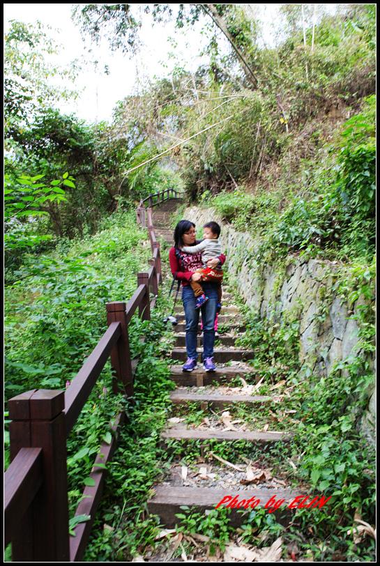 1040110.11-達娜伊谷自然生態公園&日月潭雲品酒店&車程車站-44.jpg