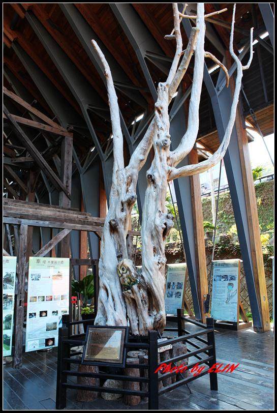 1040110.11-達娜伊谷自然生態公園&日月潭雲品酒店&車程車站-100.jpg